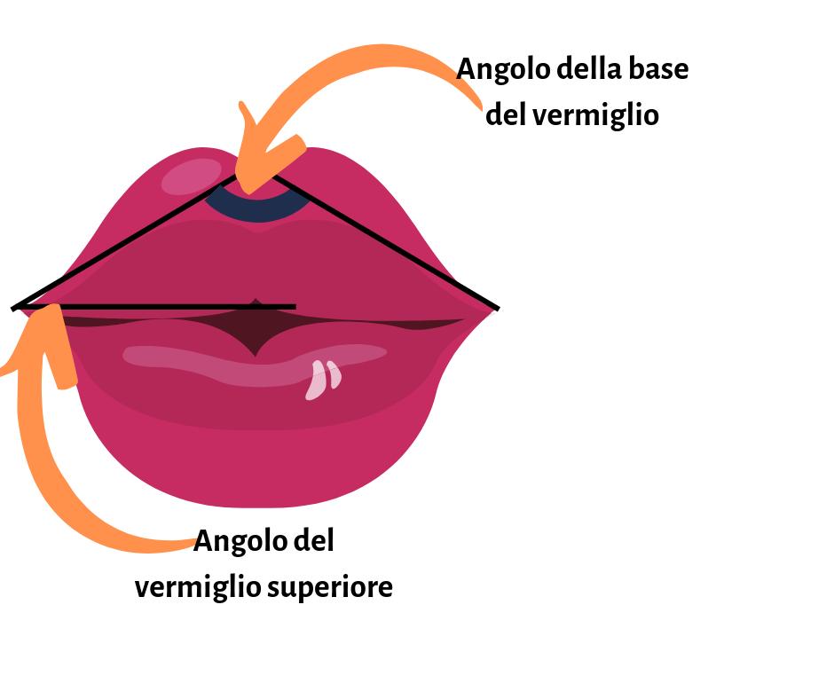L'immagine riporta la raffigurazione dell'angolo della base del vermiglio e de dell'angolo del vermiglio superiore